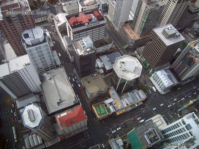 Новая Зеландия. Крыши Окленда