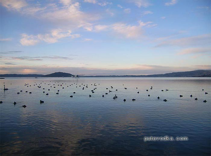 Новая Зеландия. Ротаруа. Озеро.