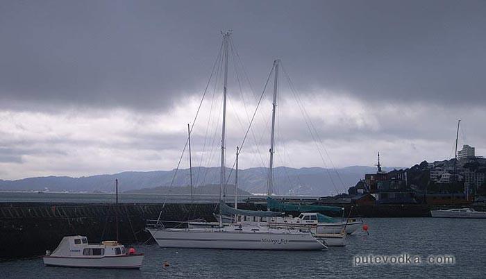 Новая Зеландия. Понеке (Веллингтон). Яхты.