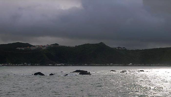 Новая Зеландия. Понеке (Веллингтон). Выход в море.