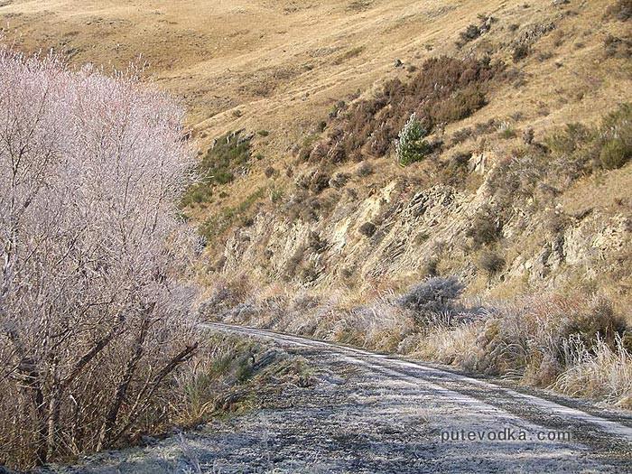 Новая Зеландия. Остров Южный. Утренний иней на горной дороге.